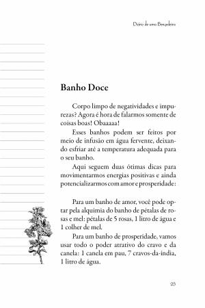 Livro Diário de uma benzedeira