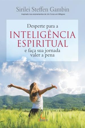 Livro Desperte para a inteligência espiritual e faça sua jornada valer a pena