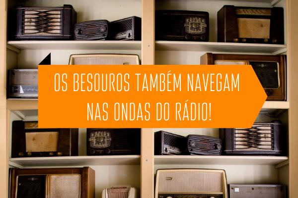 Os Besouros também navegam nas ondas do rádio!